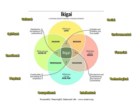 IKIGAI modified